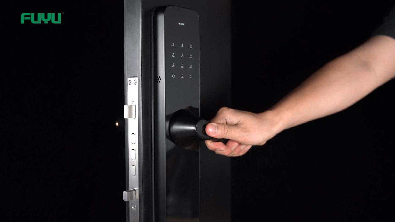 Electric door lock 6503 demonstration