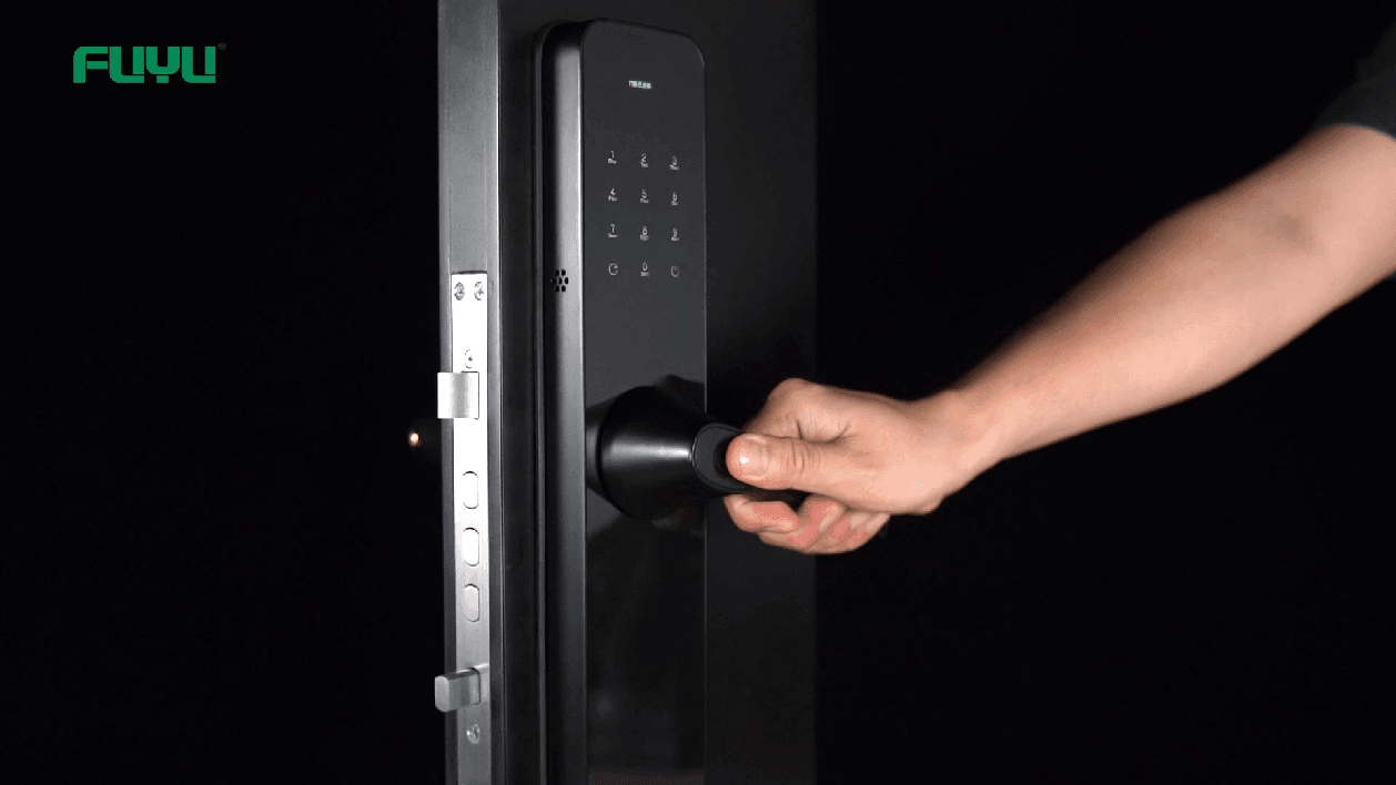 Electric door lock 6503 demonstration