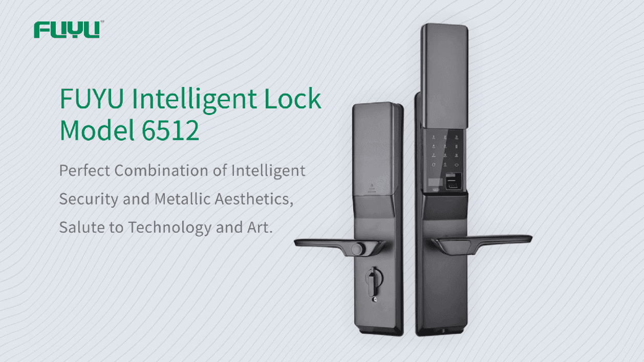 Digital door lock 6512 demonstration