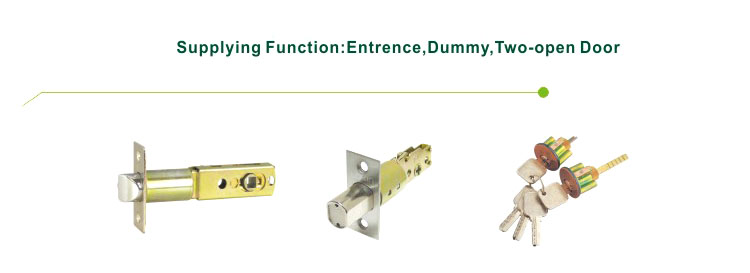 FUYU custom handle door lock manufacturer for shop-4