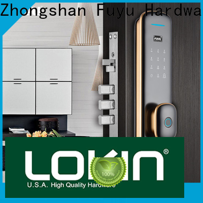 FUYU fingerprint entry door lock on sale for home