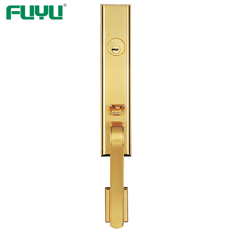 quality handle door lock supplier for home-FUYU-img