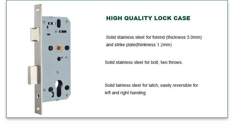 FUYU high security mortise entry lock set with international standard for wooden door