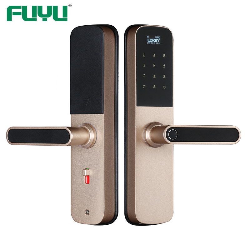 Smart door lock with wifi and tuya intergration