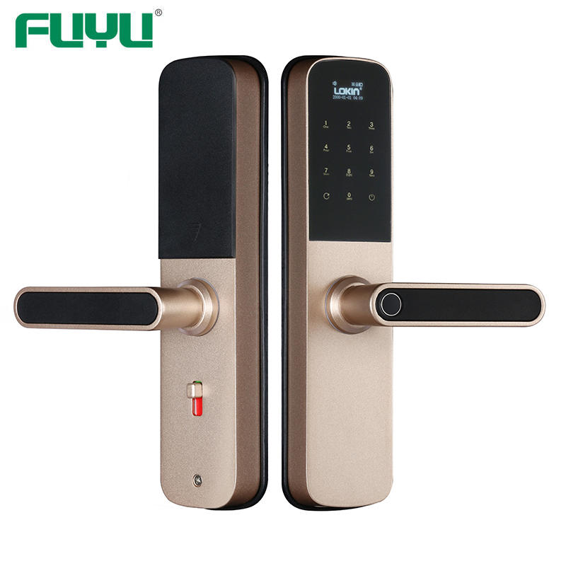 Smart door lock with wifi and tuya intergration
