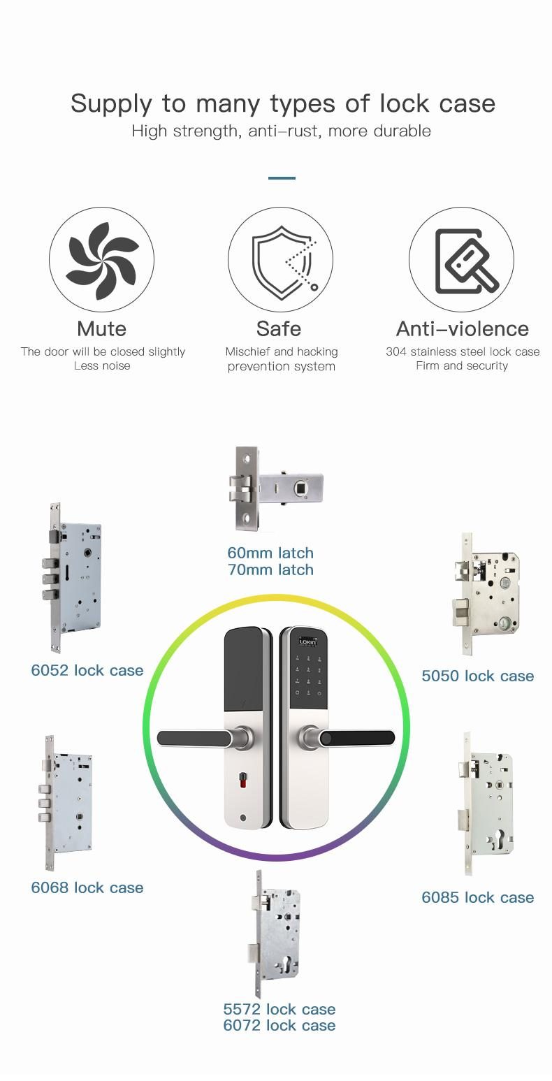 product-FUYU-Smart door lock with wifi and tuya intergration-img-1
