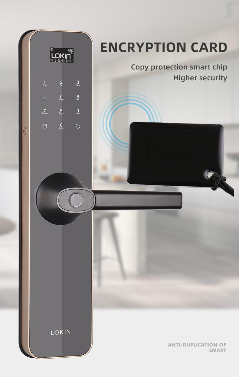 FUYU custom biometric gate lock for residential-8